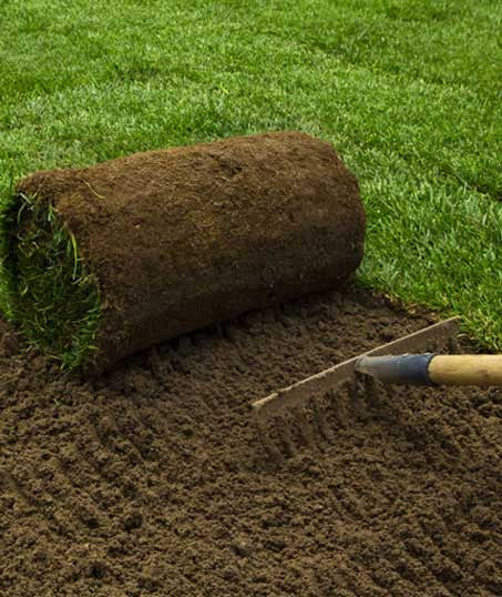 Brothers Lawn Service Sod Installation