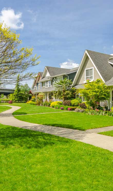 Brothers Lawn Service Residential Lawn Care