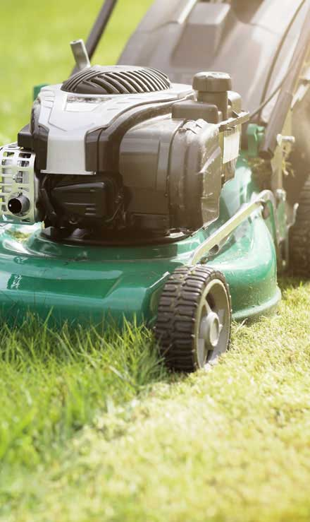 Brothers Lawn Service Residential Lawn Mowing